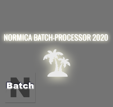 Normica Batch-Processor 2020 Einzelplatzversion